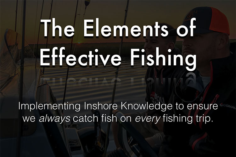 Elements of Effective Fishing