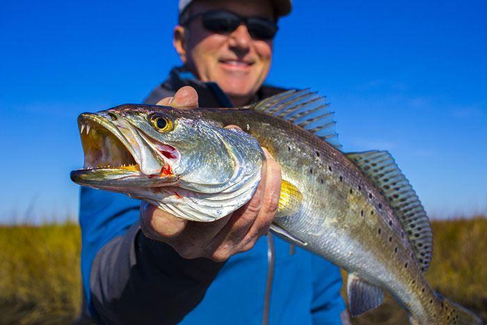 Inshore Fishing 101