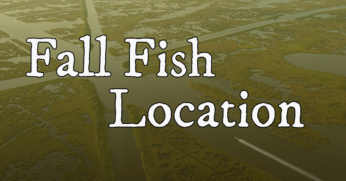 Locate Speckled Trout & Redfish During The Fall Pattern